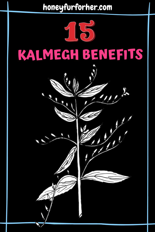 Kalmegh (Andrographis Paniculata) - The King of Bitters - Uses, Benefits, & Side-Effects #herbs #ayurveda #kalmegh #ayurvedicmedicine #honeyfurforher
