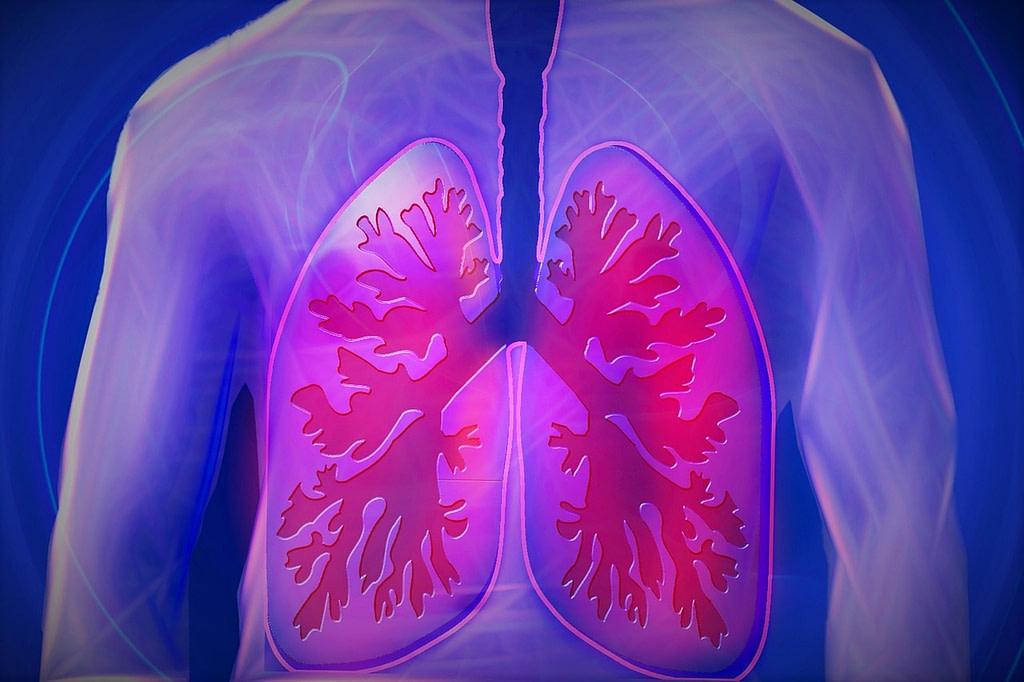 Ayurveda For Repiratory Problems
