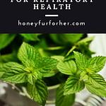 Ayurvedic Herbs For Respiratory Health Pin 2