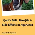 Goat Milk Benefits Pin 2