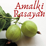 Amalki Rasayan Benefits Pinterest Pin 1