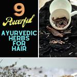 Ayurvedic Herbs For Hair Pinterest Graphic Pin 2