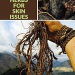 Ayurvedic Herbs For Skin Pinterest Graphic Pin 1