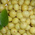 Amla - Indian Goose Berries