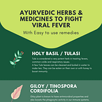 Top 10 Ayurvedic Herbs To Fight Viral Fever