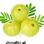 Amalki Rasayan Benefits Pinterest Image