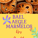 Bael Aegle marmelos Benefits Pinterest Pin Graphic
