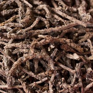 Kutki / Katuki- Picrorhiza Kurrao - Eczema Home Remedy