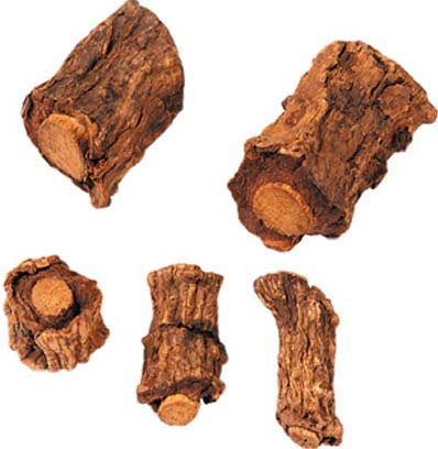 Sariva Herb Root