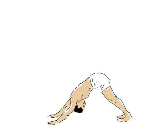 Parvatasana (Downward Facing Dog)