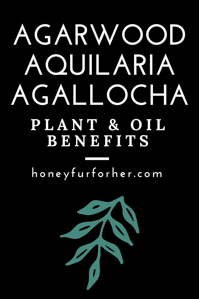 Agarwood Plant & Oil Benefits Pin 2