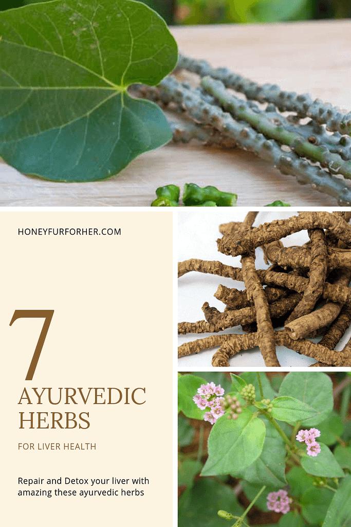 Ayurvedic Herbs For Liver Repair For Detox Pinterest Image