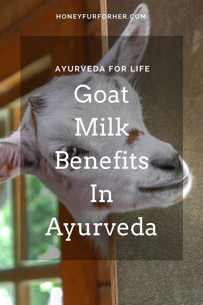 Goat's Milk Benefits In Ayurveda Pinterest Pin 1