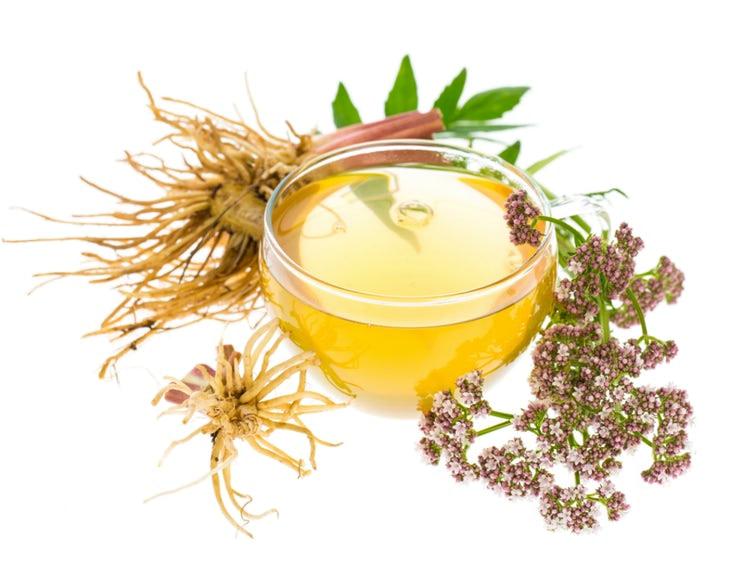 Indian Valerian Root Tea For Insomnia