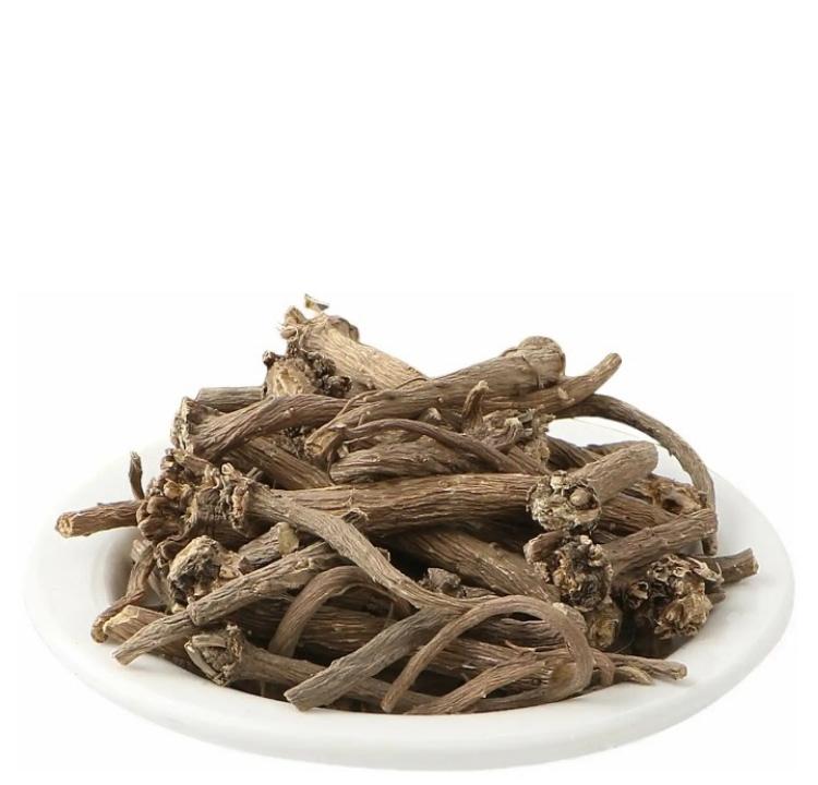 Akarkara Anacyclus Pyrethrum