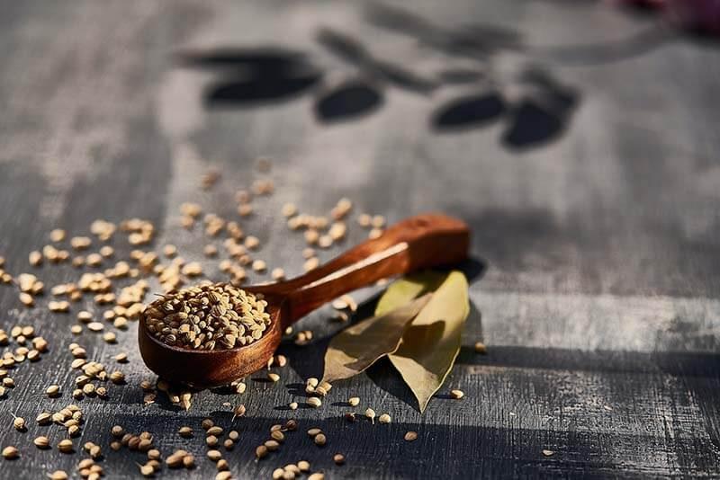Dhanyakadi Hima - Coriander Seeds
